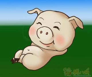 食物链顶端的猪